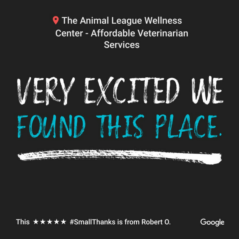 The Animal League Wellness Center 5 star Google review 1